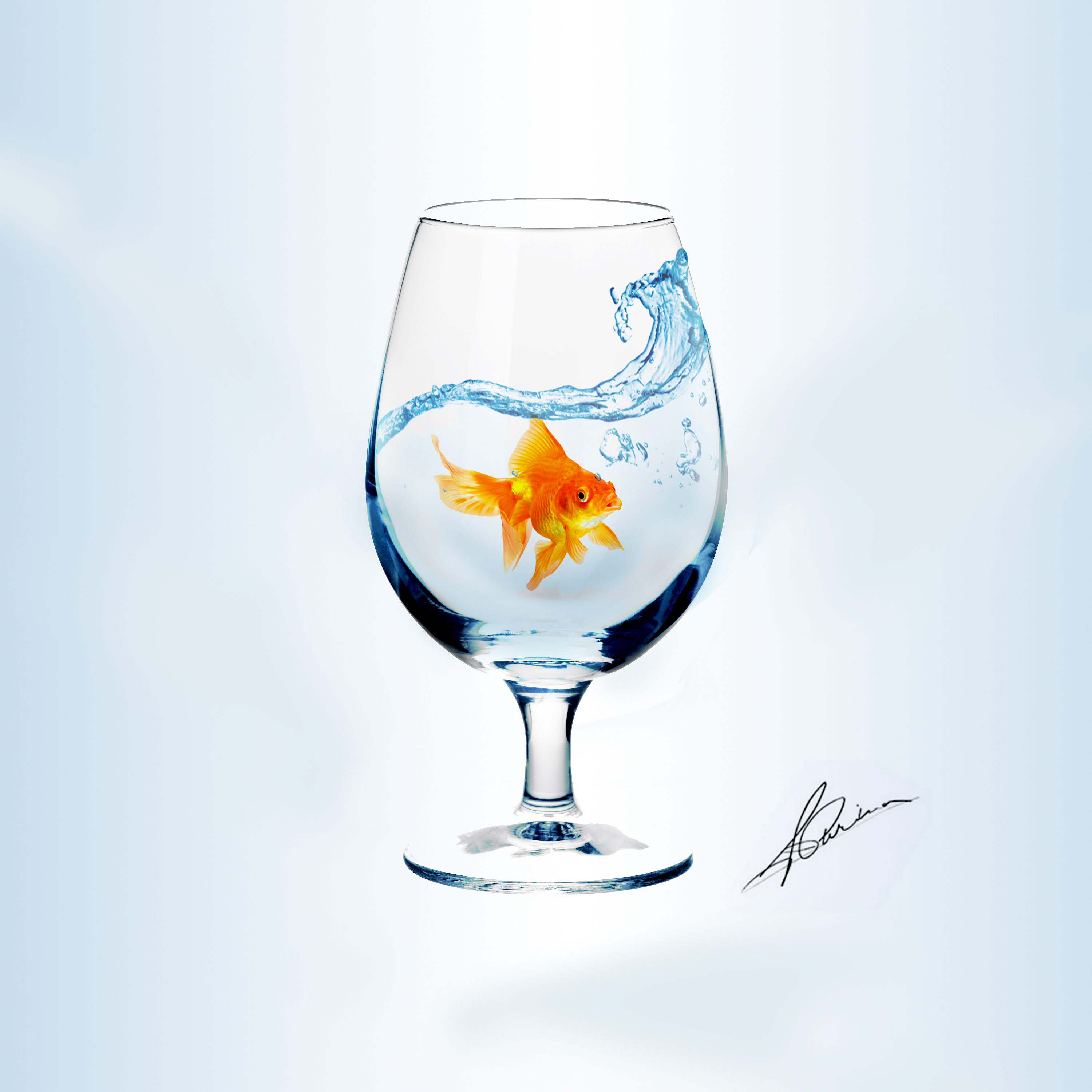 gold-fish-and-glass